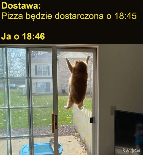 Czekanie na pizzę