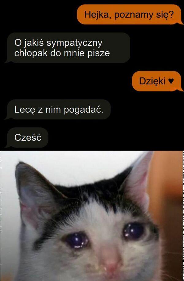 Kotek smutny