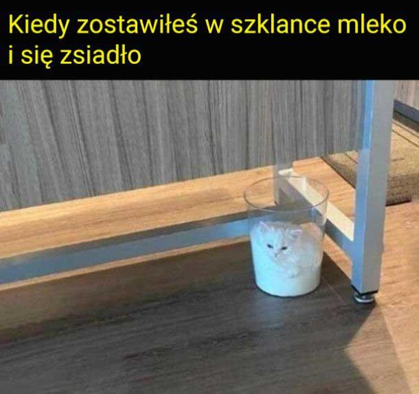 Mleko się zsiadło